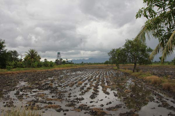 Drainage challenges in West-Timor